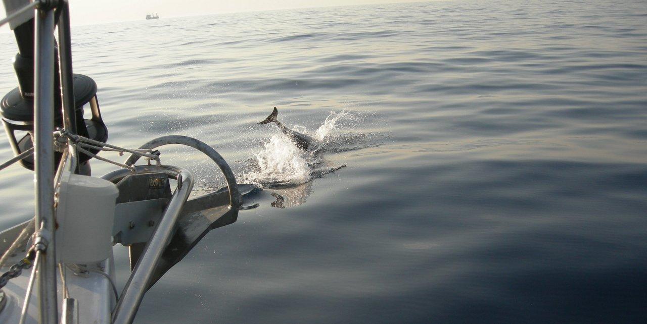 Crociera in barca a vela da Paros a Kos